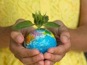 Cinq astuces simples pour protéger la planète