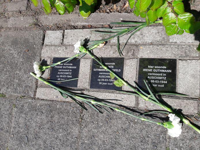 Witte anjers op de struikelstenen die herinneren aan het gruwelijke lot van het joods gezin Guthmann.