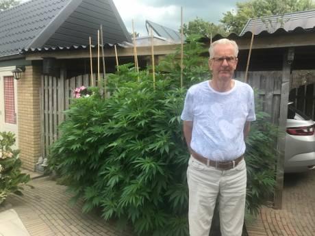 De twee wietplanten van Jan (73) uit Hasselt moeten weg: 'Een ramp voor mijn zieke vrouw'