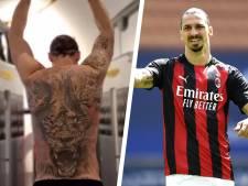 """Zlatan Ibrahimovic aurait abattu un lion en Afrique du Sud en 2011: """"C'est un misérable lâche"""""""