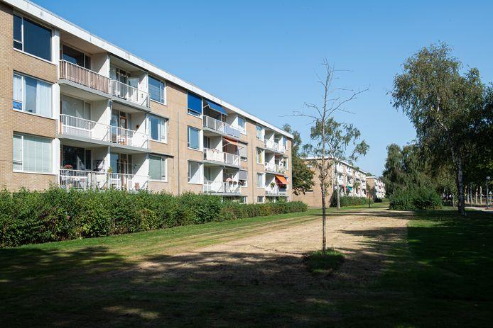De flats in Oosterheide.