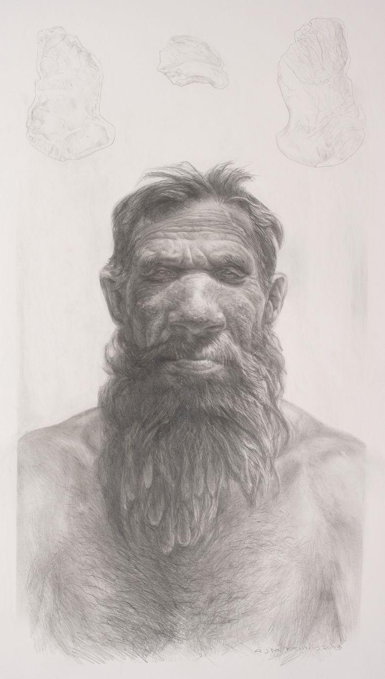 Reconstructietekening van Neanderthaler Krijn. Beeld Kennis & Kennis
