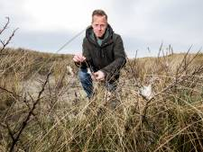 Om jeuk de komende zomer te voorkomen, knipt Roy de nesten van de bastaardsatijnrupsen vast weg