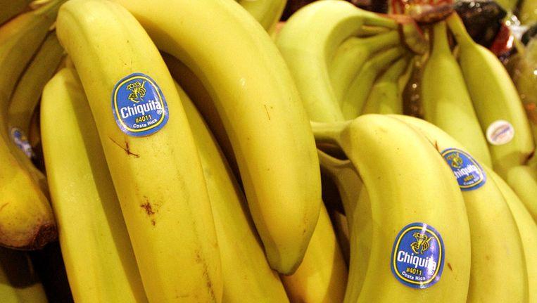 Monocultuur onder bananen. Beeld ap