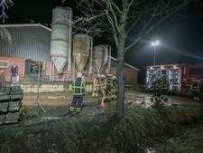 'Op varkensboerderij zakten vorig jaar ook al dieren door de vloer'