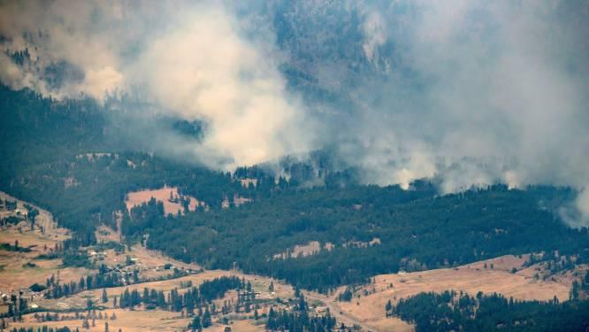 Studie: hittegolf in Noord-Amerika zo goed als ondenkbaar zonder klimaatverandering