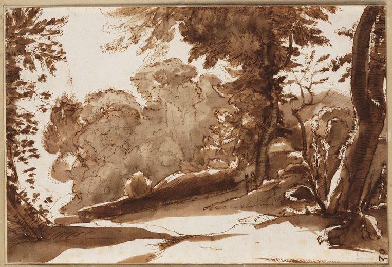 Claude Lorrain, Zonnige plek bij een bosrand, (ca. 1640-1645). Beeld Collectie Teylers Museum