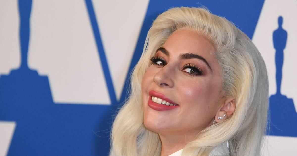 Hondjes Lady Gaga zaten vastgebonden aan paal | Show | destentor.nl - De Stentor