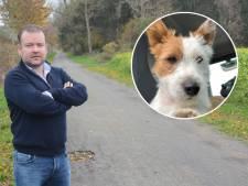 """Un petit chien poignardé à mort par un joggeur: """"Il était comme un enfant pour nous"""""""