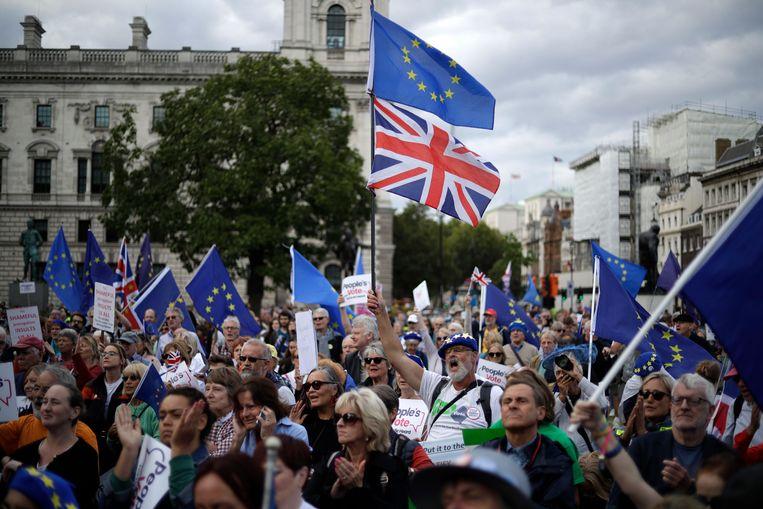 Remain-aanhangers demonstreren voor het Britse Lagerhuis in Londen. Beeld AP