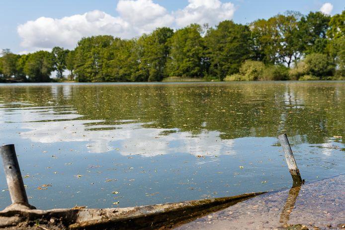 Bij de zandafgraving Zoeggat Kerkenland is blauwalg geconstateerd. Het advies is om contact met het water te vermijden.