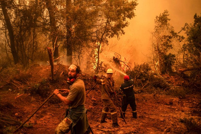 Brandweer en vrijwilligers in touw op het Griekse eiland Evia. Beeld AFP