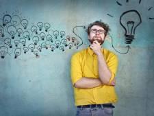 Honderd ideeën voor een bedrijf, maar welke kies je?