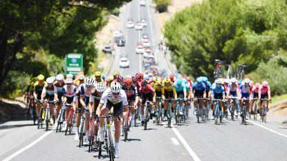 Drie conclusies uit de Tour Down Under of wat de Australische 'opwarmer' voor het wielerseizoen ons leerde