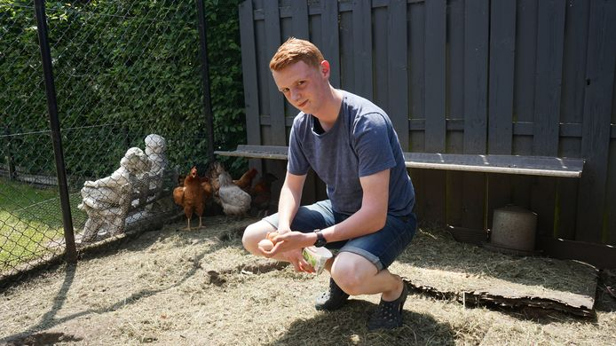 De familie Felix uit de Neerstraat is niet van plan om voorlopig geen eieren meer te eten van de eigen kippen.