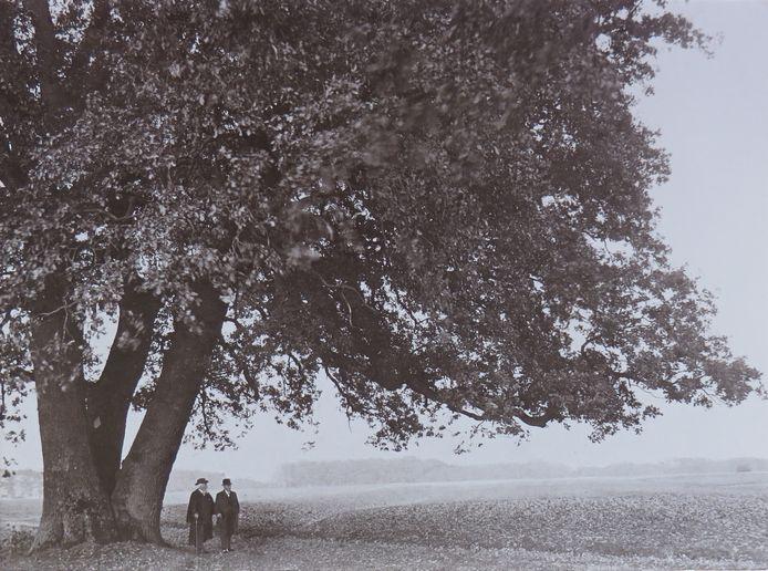 Twee mannen onder een eik, met op de achtergrond een es. Arend Heideman lokaliseert de foto in de omgeving van Delden
