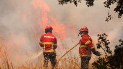 Bosbranden in de Algarve blijven woeden: 29 gewonden en meer dan 16.500 hectare verwoest
