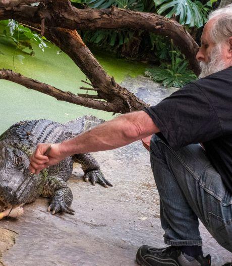 2500 euro per week slikken de reptielen van Iguana weg. 'Het is de vraag of we nog open gaan'