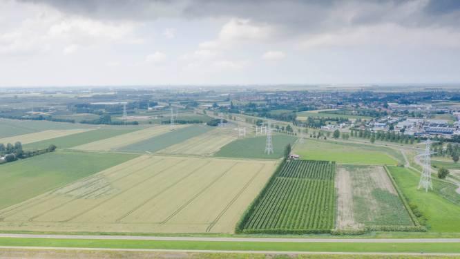Smokkelhoek II krijgt energiepark met windmolens en zonnepark; nog geen plannen voor kerncentrale