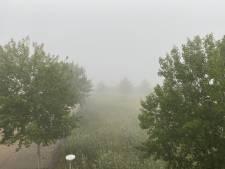 Code geel voor dichte mist in Zeeland