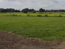 Kleine Sallandse dorpjes verenigen zich in energiecoöperatie: 'Bescheiden zonneweide op komst'