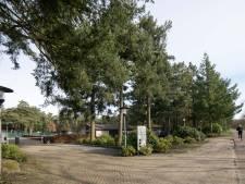 Ook Dennenhoek wordt woonwijk, met arbeidsmigranten als buren