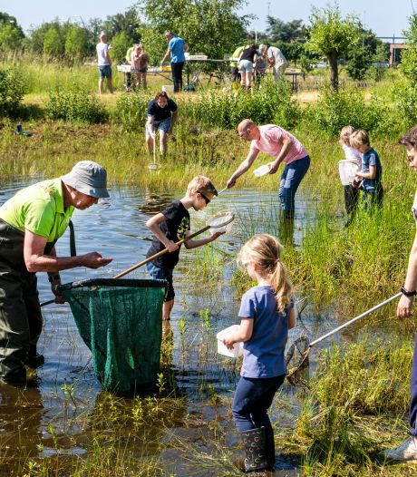 Met een visnetje in Uden op jacht naar waterdieren