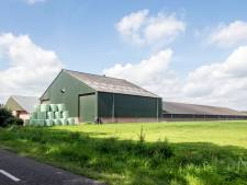 Uitbreiding varkenshouderij mag doorgaan, tot frustratie van (deel van) gemeenteraad Dinkelland