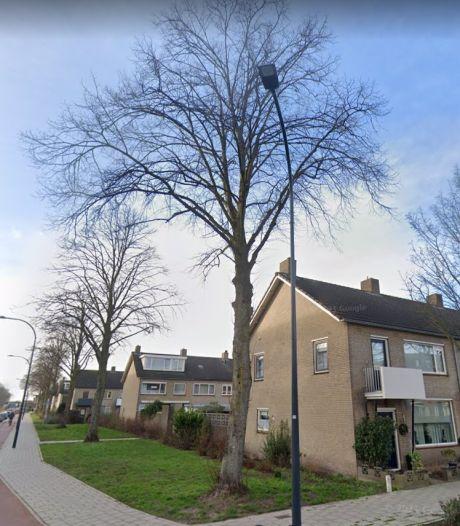 Nieuw hoofdstuk bomensoap Waalwijk