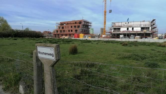 Supermarkt Jumbo heeft zijn oog laten vallen op Diksmuide: openbaar onderzoek is gestart