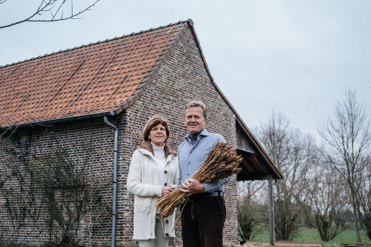 Bénédicte Versele en Marc Verhofstede startten in 2015 met de teelt van quinoa op hun biologische boerderij in Zulte.  Beeld Wouter Van Vooren
