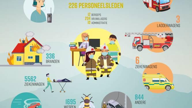 Brandweer Meetjesland rukte in 2020 het meest uit voor wespennesten