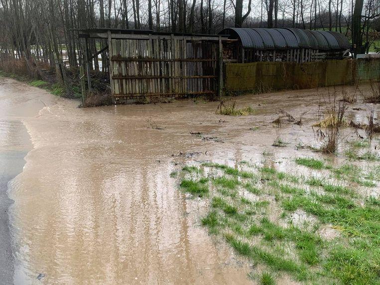 Een deel van de Wurmendries staat onder water. Beeld Frank Eeckhout