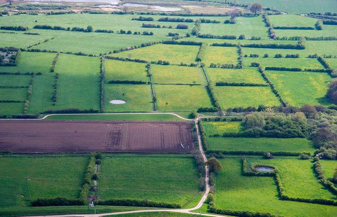 De heggen, kenmerkend voor het Maasheggenlandschap, waar gewerkt en gerecreëerd wordt.