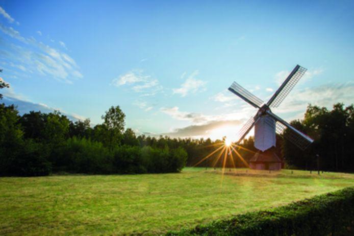 Op 63 plaatsen kan je zondag genieten van Limburgs erfgoed op Open Monumentendag.