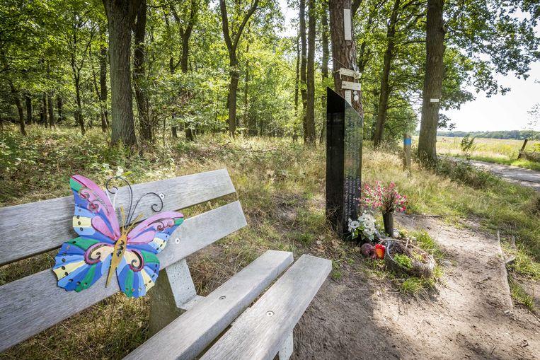 Een vlinder hangt op het bankje bij het monument op de Brunssummerheide, waar het lichaam van de 11-jarige Nicky Verstappen werd gevonden. Beeld ANP