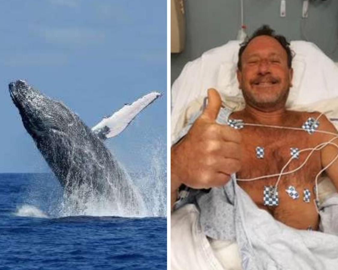 """Ce vendredi, Michael Packard, un pêcheur du Massachusetts, a été """"avalé"""" brièvement par une baleine à bosse, avant d'être rejeté dans l'océan, vivant."""