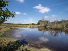Borkeld en Zunasche Heide maken meer natuur mogelijk in de IJsselstreek
