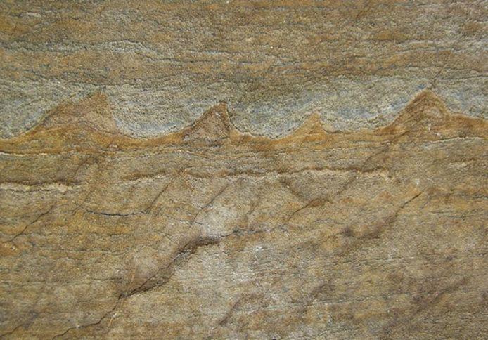 Nutman vond sporen van bacterieel leven in 3,7 miljard jaar oude steenlagen