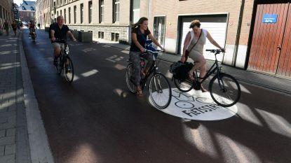 """""""Leuven moet dé fietsstad worden!"""""""