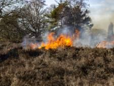 Tientallen hectares heide op Sallandse Heuvelrug in vlammen op