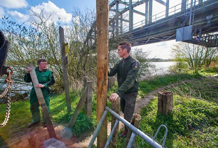 Ido Pruijn (rechts) en Han Quik van Natuurmonumenten herstellen een klappoortje vlakbij de spoorbrug over de Maas bij Ravenstein.