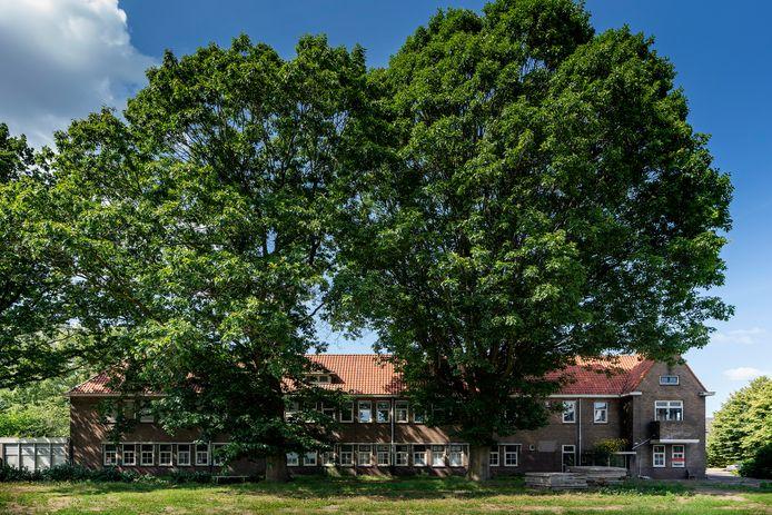 Het oude Lindelust met zijn reusachtige bomen.
