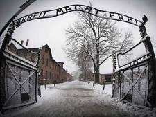 Auschwitz doet aangifte tegen diefstal studente voor kunstproject