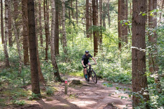 Een mountainbiker in het Leuvenumse bos bij Harderwijk.