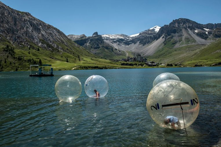 'Bubbles' Beeld Thomas Verfaille