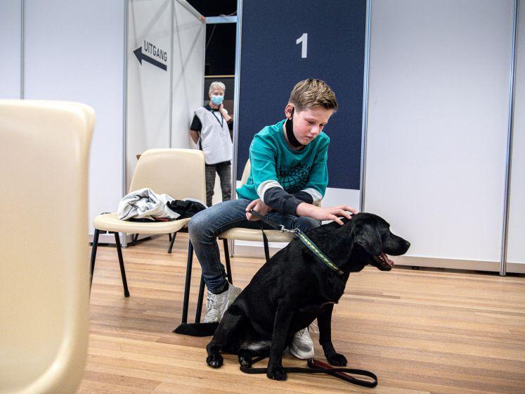 Na de speurhond, blindengeleidehond en de drugshond is er nu ook een vaccinatiehond
