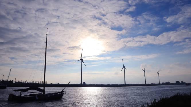 Energievereniging tegen gemeenten: 'Staar je niet blind op zonnepanelen, dat is duurder dan je denkt'