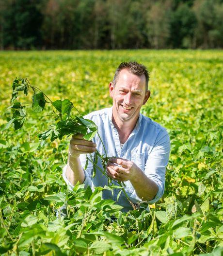 De boontjes van boer Jan kunnen zomaar in jouw sojamelk belanden
