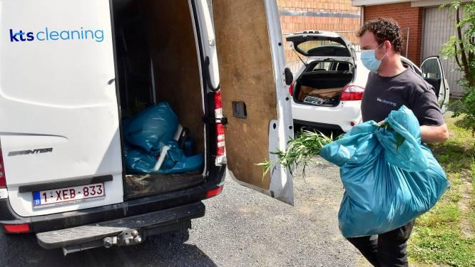 """Cannabisplantage opgerold op zolder van woning: """"Al drie jaar ruiken en zien we hier om de haverklap rare dingen"""""""